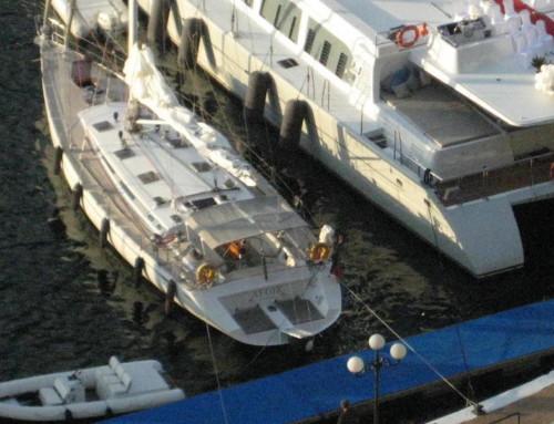 Levrier de Mer 63